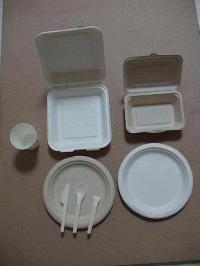 ظروف یکبار مصرف گیاهی